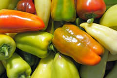 Colorful pepper background Royalty Free Stock Image