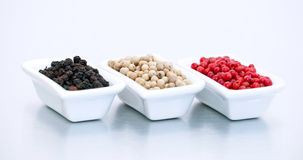 Colorful pepper berries Stock Images