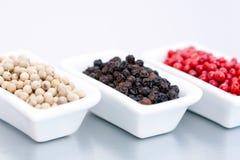 Colorful pepper berries Stock Image