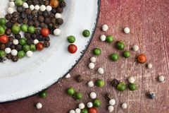 Colorful  peppercorns spice Stock Images
