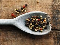 Colorful Peppercorns on a Wooden Spoon Stock Photo