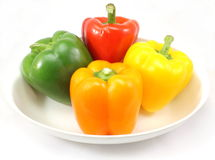 Colorful Peppers. Four colorful peppers that are red, green, yellow, orange Stock Photos