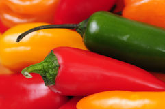 Colorful Peppers. This is a colorful, close-up photograph of a variety of peppers.  This photograph is perfect for a restaurant environment or serves as a simple Royalty Free Stock Photos