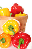 Colorful peppers in a basket. Shot of colorful peppers in a basket Royalty Free Stock Image