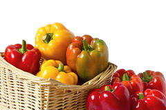 Colorful peppers in the basket Royalty Free Stock Images