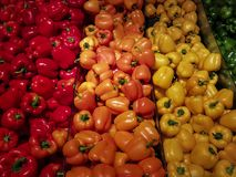 Colorful peppers in the supermarket. royalty free stock images
