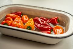 Colorful peppers in water in vintage enamel bowl stock image