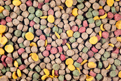 Colorful pet food Royalty Free Stock Image