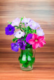 Colorful petunia blooms in a glass pitcher Stock Image