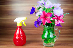 Colorful petunia blooms in a glass pitcher with watering can Royalty Free Stock Photo