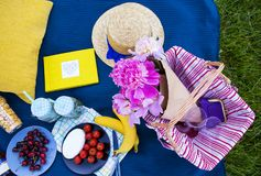Picnic on nature. Colorful picnic with delicious food and drinks, lunch outdoors Stock Images