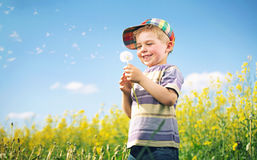 Colorful picture of child playing dandelion Royalty Free Stock Photography