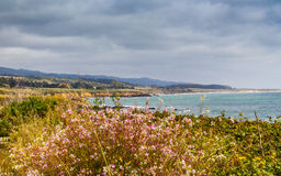 Colorful Pigeon Point Bluffs Stock Images