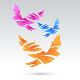 Colorful pigeons. Abstract birds. Stock Photography