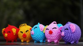 Colorful pigs stock photos