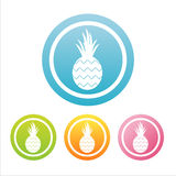 Colorful pineapple signs Stock Image