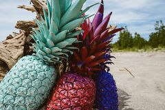 Colorful pineapples on beach Stock Photo