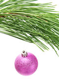 Colorful pink bauble hanging on Christmas tree Stock Photo