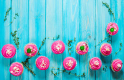 Colorful pink Cupcakes on blue wood background. Top view. And copyspace Royalty Free Stock Image