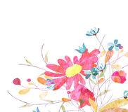 Colorful pink flowers, watercolor Royalty Free Stock Photos