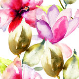 Colorful pink flowers, watercolor illustration Stock Images
