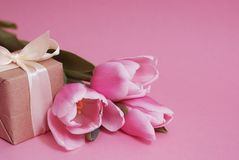 Colorful pink, fucsia Valentines Day background. Pink tulip flowers bouquet with gift box, on pink background. Spring time, copy royalty free stock image