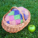 Colorful pink, green, blue, orange, knitted wool cardigan in wooden basket with green fresh apple on the green grass background. R stock images