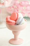Colorful pink and grey macarons in cup Stock Images