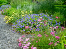 Colorful pink, purple, and yellow flowers in a garden. A colorful garden with pastel pink, yellow, and purple flowers among luscious green plants and a gravel Royalty Free Stock Photography