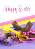 Colorful pink, yellow and purple theme Happy Easter theme with chocolate bunny rabbits and Spring tulips with sample text Royalty Free Stock Photo