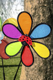 Colorful pinwheel toy Royalty Free Stock Image