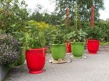 Colorful planters in park Stock Photo