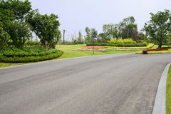 Colorful plants along asphalt road in sunny summer Stock Images