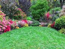 Colorful plants surrounding a green lawn Stock Image