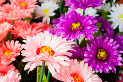 Colorful plastic flowers. stock photo