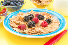 Colorful plate with raspberries blackberries cereal and milk Stock Photos