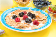 Colorful plate with raspberries blackberries cereal and milk Royalty Free Stock Photography