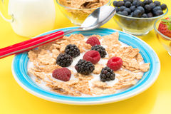 Colorful plate with raspberries blackberries Royalty Free Stock Photo