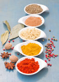 Colorful plates spices on blue  table Stock Image