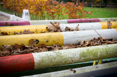 Colorful poles Royalty Free Stock Image