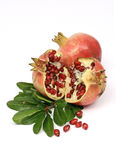 Colorful pomegranate Stock Photos