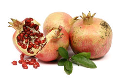 Colorful pomegranate Stock Photo