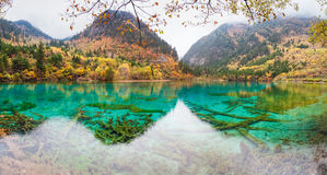 Colorful pond in jiuzhaigou Stock Image