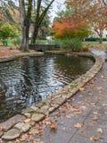 Colorful pond, Sonoma, California Stock Photography