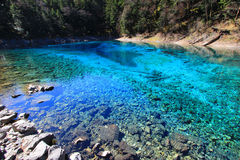 Colorful Pool(Multicolor Pond),Jiuzhaigou,north of Sichuan province, China. Jiuzhaigou Valley Scenic and Historic Interest Area and World Heritage Site Stock Images