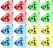 Colorful Pop Art Dog Royalty Free Stock Photography