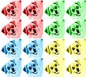 Colorful Pop Art Dog