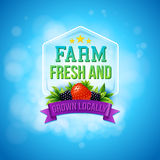 Colorful poster design for Farm Fresh produce Royalty Free Stock Photos
