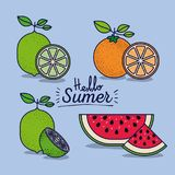 Colorful poster of hello summer with citrus fruits and watermelon. Vector illustration Royalty Free Stock Photos