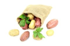 Colorful potatoes in jute sack Royalty Free Stock Photography